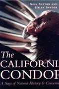 The California Condor Book Cover Revive & Restore