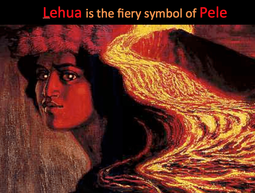 Lehua fiery symbol of Pele Revive and Restore
