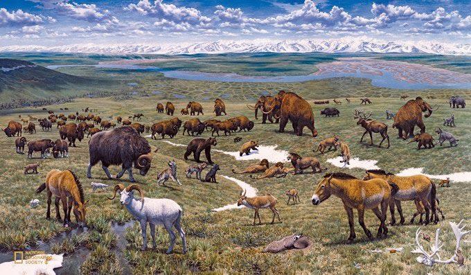 mammoth steppe